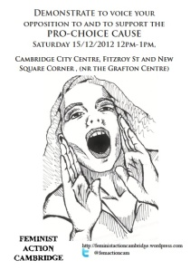 flier2 demo Dec 15 12