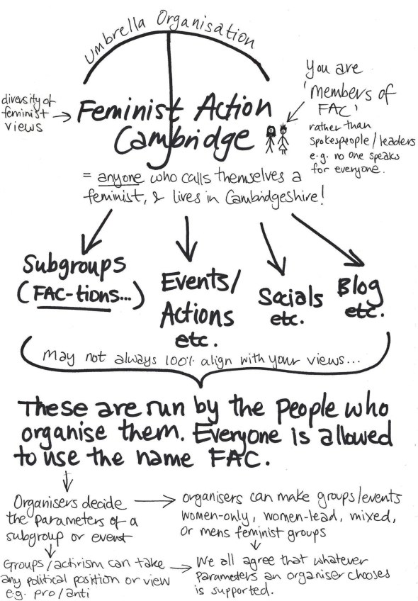 The structure of feminist action cambridge